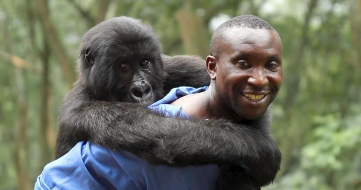 Virunga Netflix